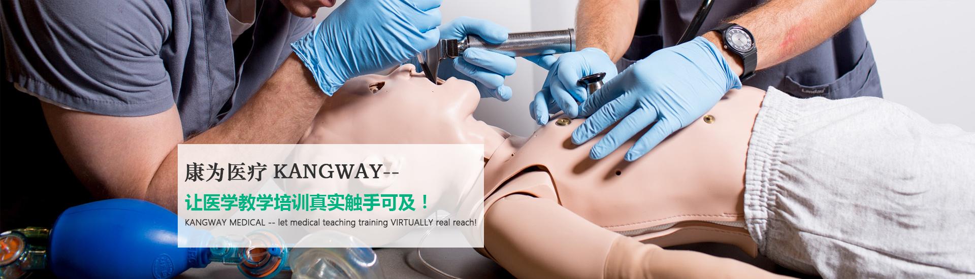 中国医学教学模型制造中心